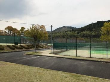 大石緑地スポーツ村の画像1