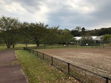 大石緑地スポーツ村の画像3