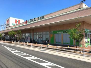 ハローズ手城店の画像1