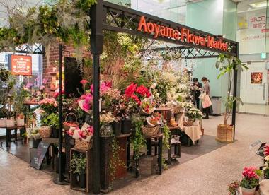 青山フラワーマーケット 京阪シティモール店の画像1