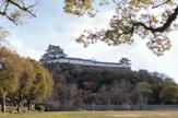 和歌山城公園