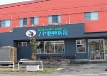 ノヤ動物病院