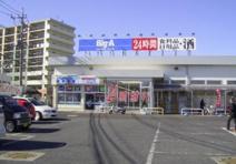 ビッグ・エー 三芳竹間沢店