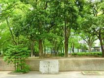 徳丸ヶ原公園