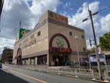 キャンドゥ ライフ経堂店