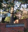 私立立教池袋高校