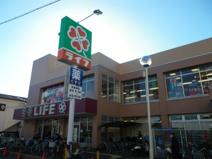 ライフ 東向島店