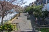 岡村ひばりが丘公園