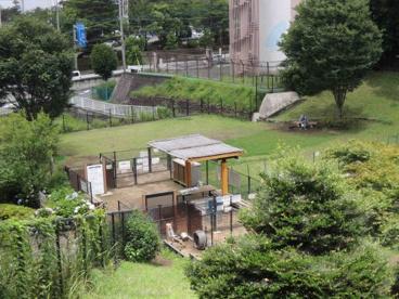 都立桜ヶ丘公園ドッグランの画像1