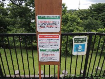 都立桜ヶ丘公園ドッグランの画像2