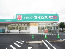 ドラッグセイムス 高崎片岡町店