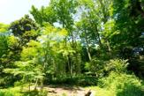 岡本下山小緑地