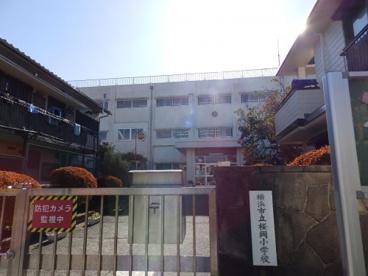 横浜市立桜岡小学校の画像1