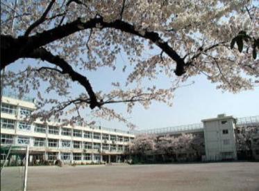 練馬区立上石神井中学校の画像1