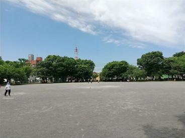 東柏ケ谷近隣公園の画像1