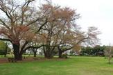 みほり広場公園