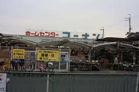 コーナン 鳳店の画像1