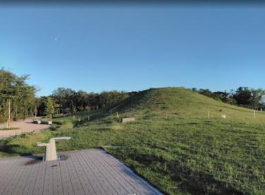 むさしの公園の画像1