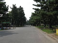浜寺公園の画像1