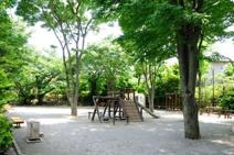 和田中央公園