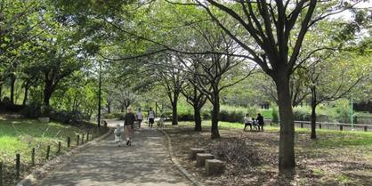上祖師谷小緑地の画像1