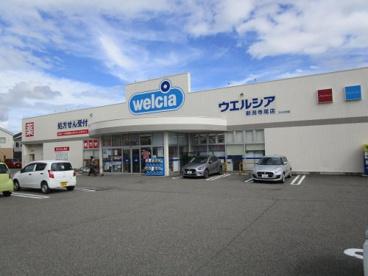 ウェルシア新潟寺尾店の画像1
