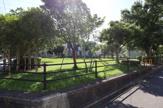 新山東児童公園