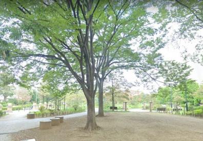 平成つつじ公園の画像1