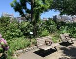 小松川緑地
