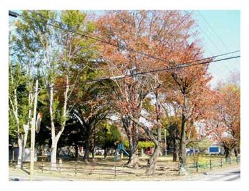 今泉公園の画像1