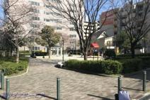 新高東公園