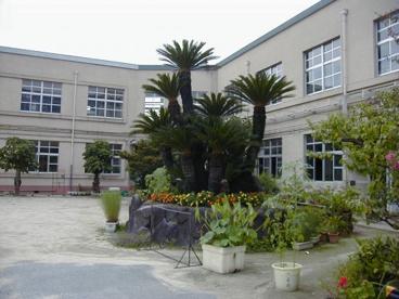 石切小学校の画像1
