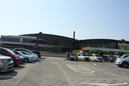 大阪府立臨海スポーツセンターの画像3