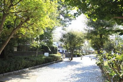 烏山川緑道の画像1