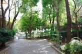 薬園坂緑地