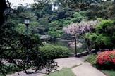 綱町三井倶楽部庭園