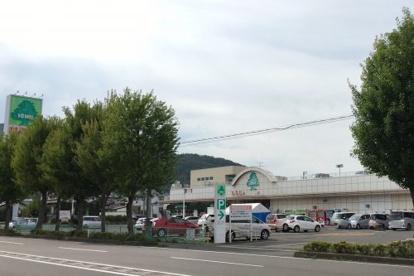 いちい 信夫ヶ丘店の画像2