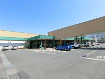TSURUYA(ツルヤ) 須坂西店