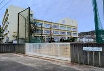 南ひばりガ丘中学校