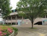 軟式野球場(保土ケ谷公園)