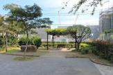 白鷺ネムノキ公園