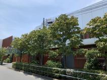 新栄保育園