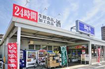 ビッグ・エー 所沢狭山ヶ丘店