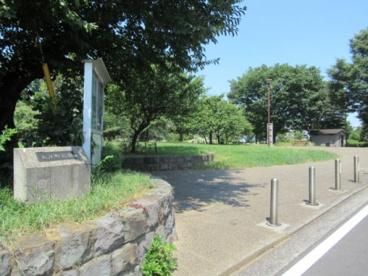 入江町公園の画像1