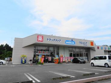 ウエルシア宇都宮兵庫塚店の画像3