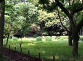 砧五丁目小緑地