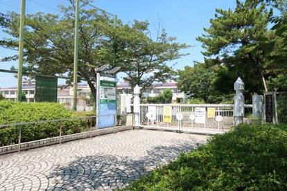 大松台小学校の画像1