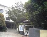私立多摩美術大学造形表現学部