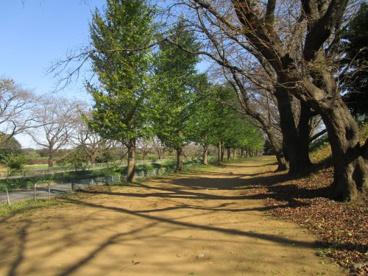 宮本第四公園の画像1