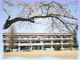 河北小学校